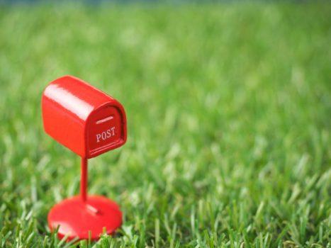 芝生に与える肥料の種類を解説!いつ、どうやって与えるのがベスト?