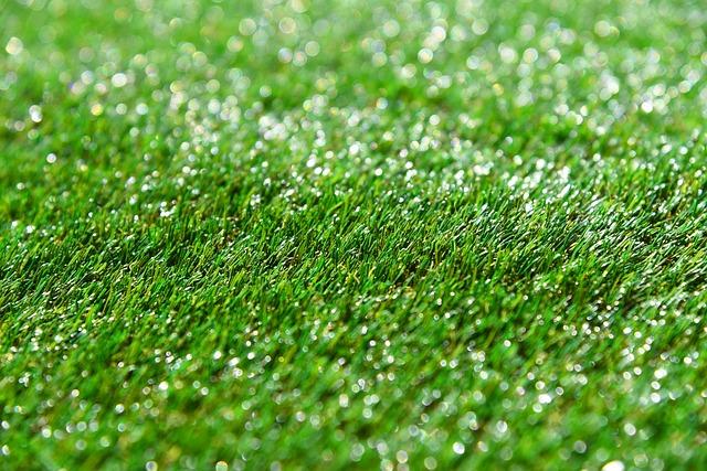 芝張りに適した時期と方法